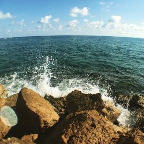 Mediterranian.