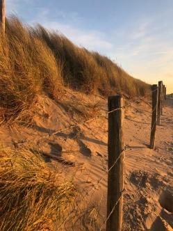 Shoreline <3