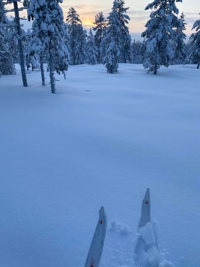 Lapland next
